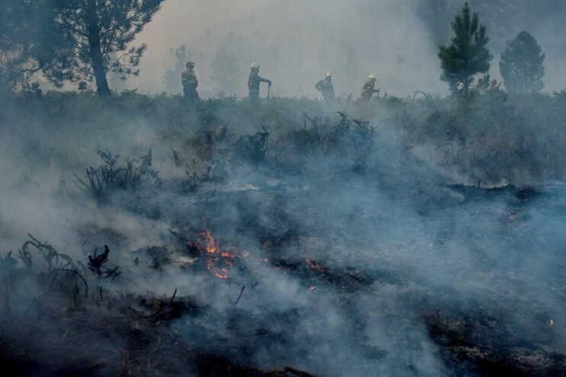 Incêndios: Nevoeiro e fumo do fogo impedem uso de meios aéreos no Lindoso, Gerês