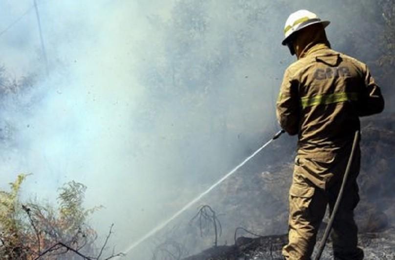 Incêndios: Fogo que deflagrou na 6.ª feira em Cabeceiras de Basto em fase de conclusão