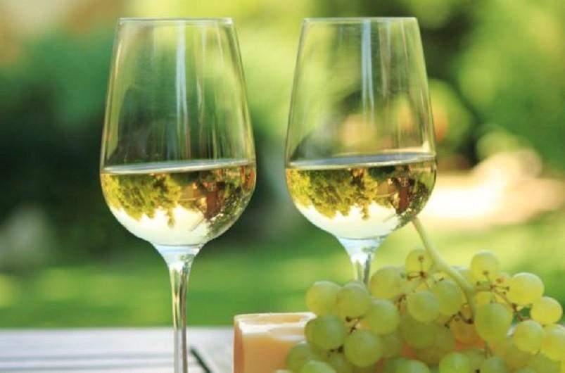 Dez produtores de vinho verde de portas abertas no dia 05 e já estão cheios