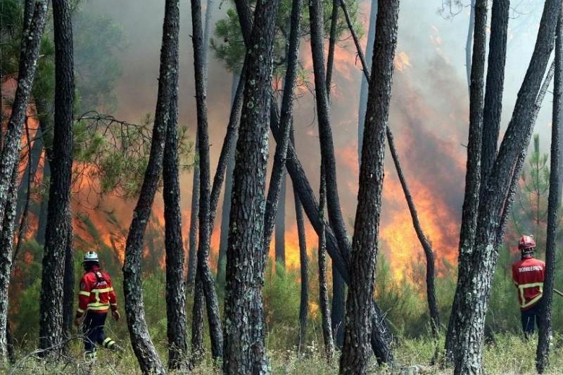 Incêndios: Fogo em Vila Verde mobiliza 112 homens e dois meios aéreos
