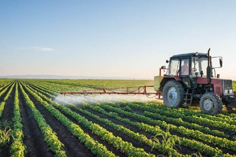 Associação apela a Governo que reforce programa para o desenvolvimento rural +CO3SO