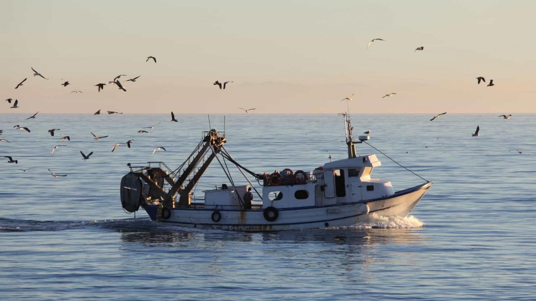 Vinte e oito pescadores de Viana do Castelo recebem 500 mil euros por parque eólico