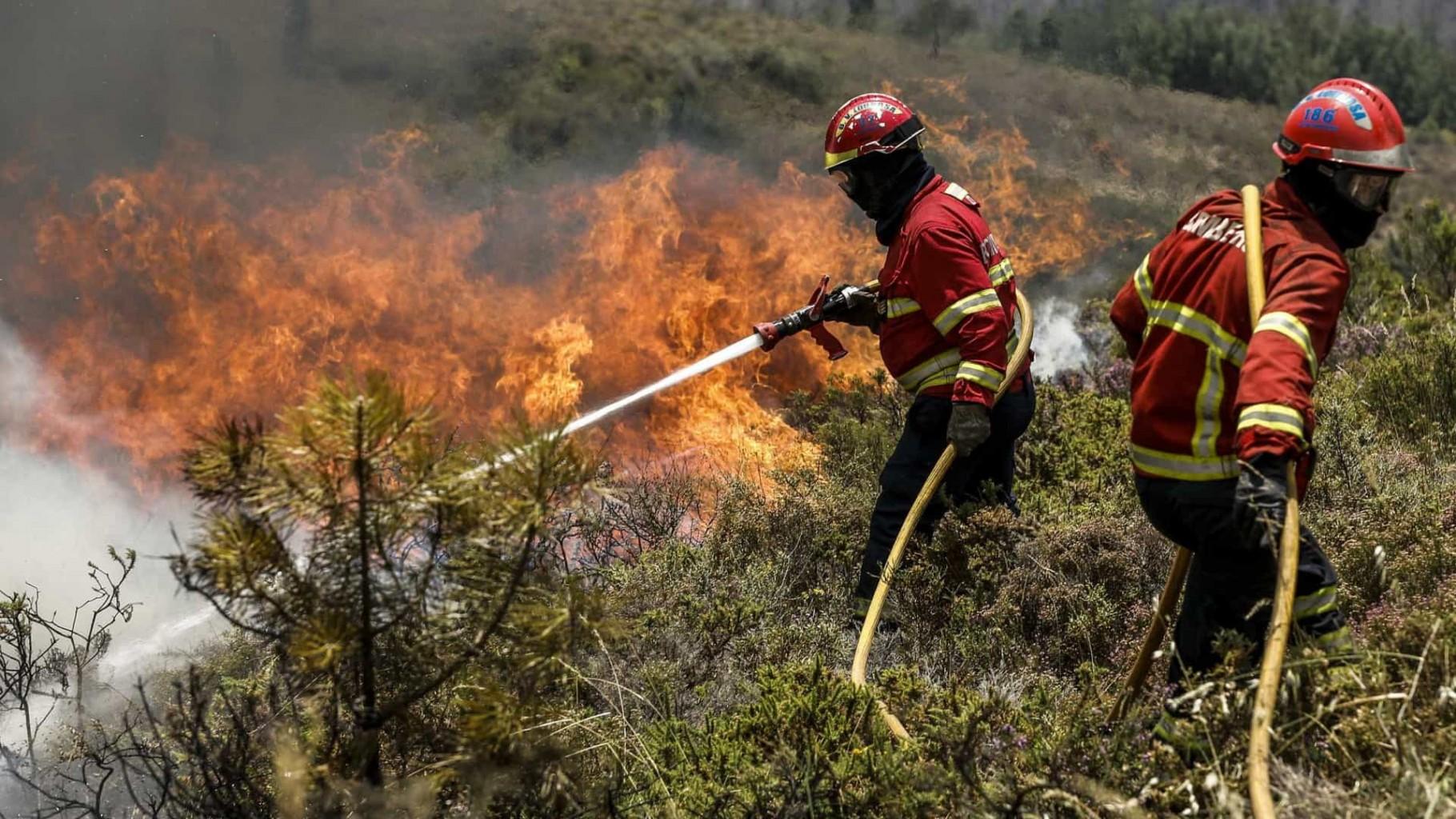 Incêndios: Três concelhos de Coimbra e Faro em risco máximo