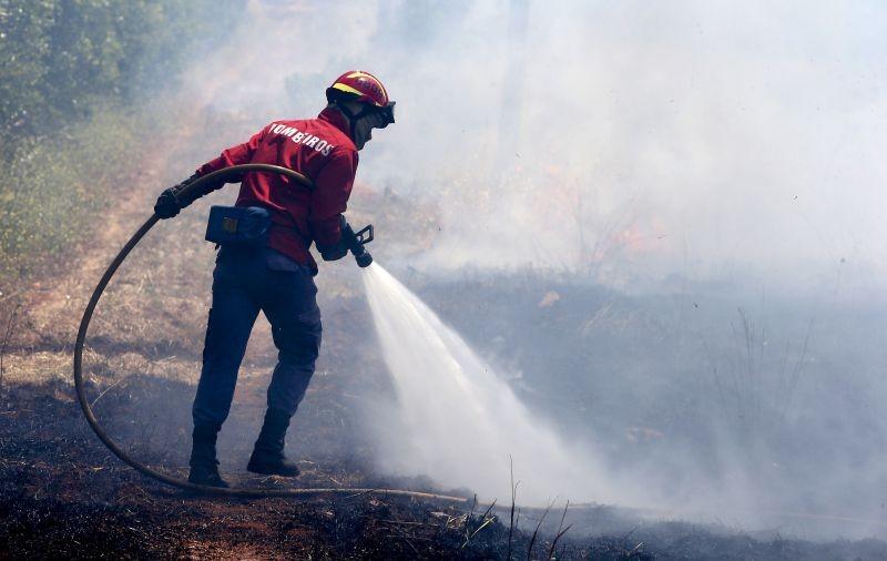 Incêndios: Fogo arde em Vieira do Minho desde a uma da manhã