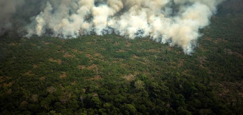 Amazónia: Manifestantes apelam no Porto à defesa do ambiente e contestam Bolsonaro