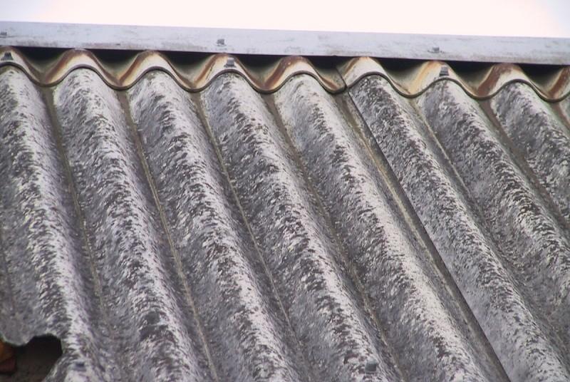 Braga vai retirar placas com amianto de seis edifícios escolares do concelho