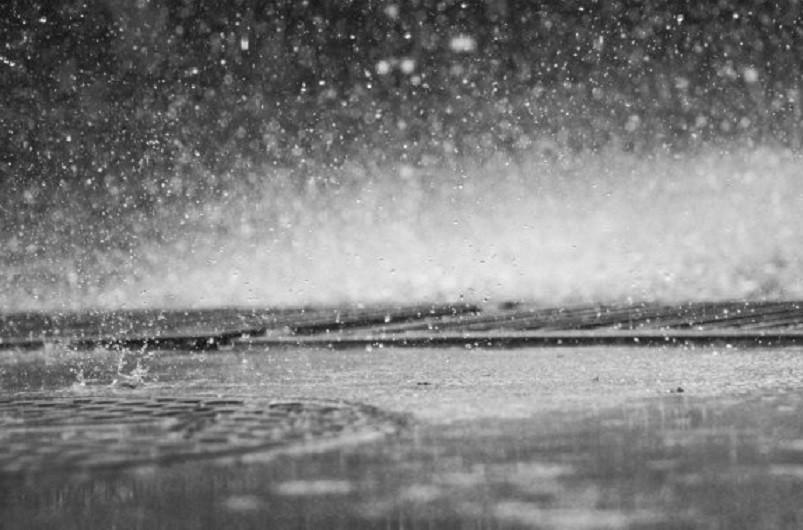 Portugal com 478 ocorrências até às 16:00 devido ao mau tempo - Proteção Civil