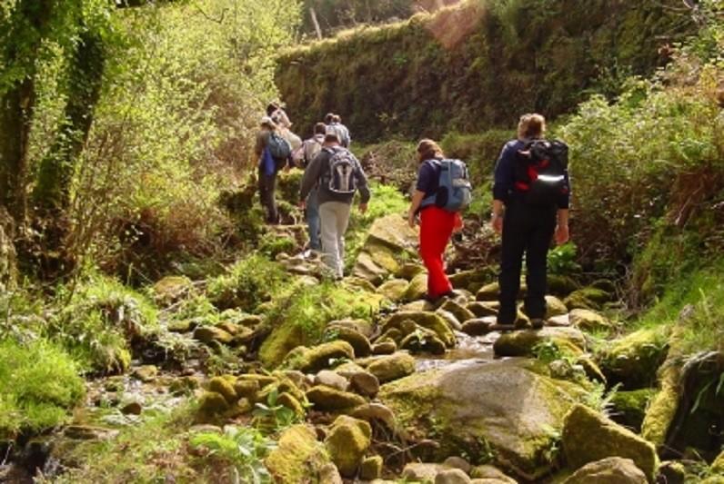 Famalicão vai ter rede municipal de trilhos de natureza com 62,3 kms