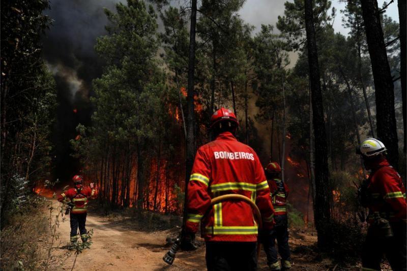 Incêndios: Nove concelhos da Guarda, Castelo Branco e Faro em risco máximo