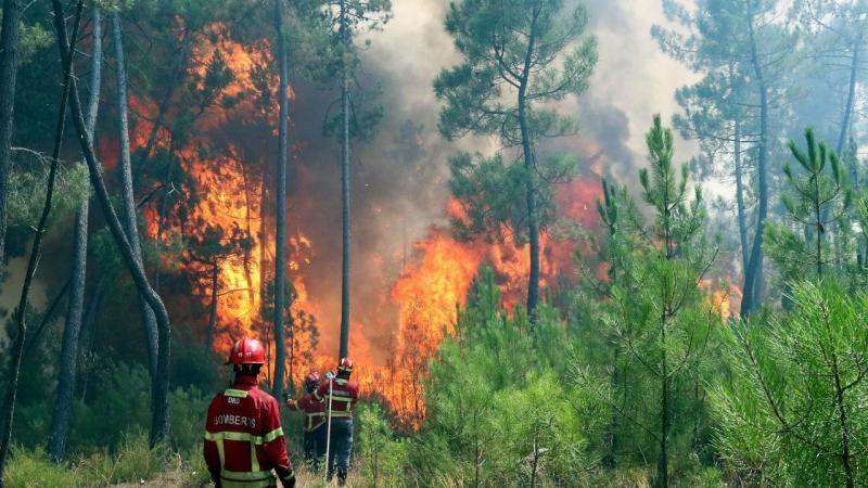 Incêndios: Dezassete concelhos de cinco distritos em risco máximo
