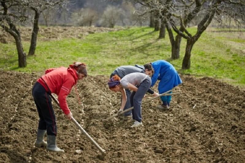 CNA reclama em assembleia-geral apoios para a agricultura familiar