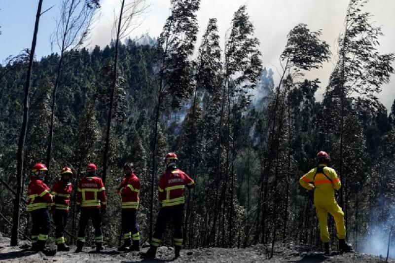 Incêndios: Mais de 2500 operacionais e 26 meios aéreos combatem chamas no país