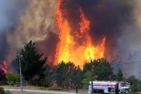 Incêndios: Mais de 100 concelhos de 13 distritos em risco máximo