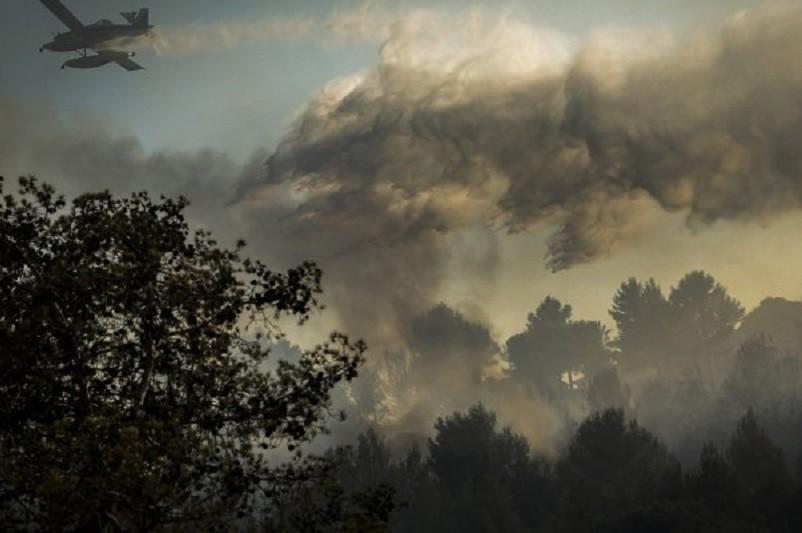 Mais de 40 concelhos do interior Norte e Centro e do Algarve em risco máximo de  incêndio