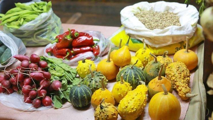 CAMINHA: Feira agrícola e dos produtos tradicionais anima Vila Praia de Âncora
