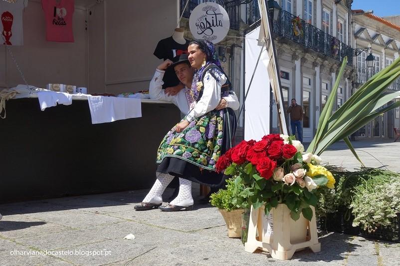 Viana do Castelo quer plantas flores nas varandas e fachadas do centro histórico