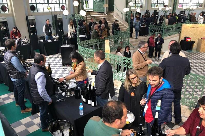 White Experience prova excelência dos vinhos de Monção e Melgaço