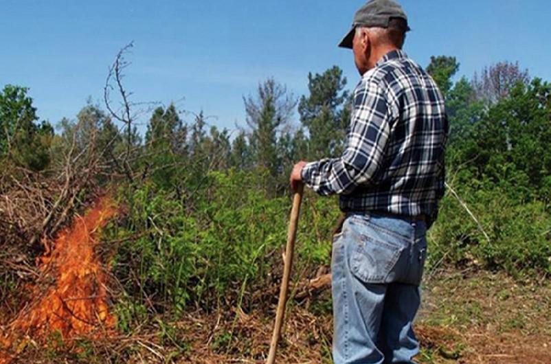 Um terço dos incêndios florestais registados este ano e investigados tiveram como causa queimadas e queimas, revela o último relatório do Instituto da Conservação da Natureza e das Florestas (ICNF).