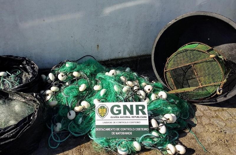 GNR apreende lampreia-marinha avaliada em 690 euros em Viana do Castelo e Esposende