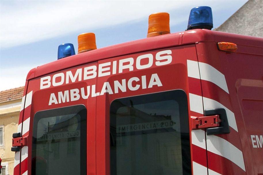 Homem de 55 anos ferido com gravidade numa vacaria em Braga