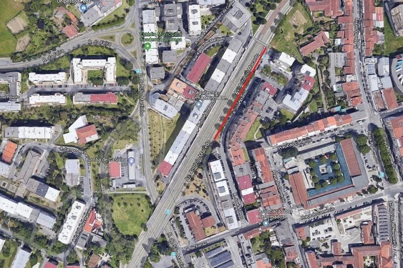 Câmara de Braga vai remover cerca de 130 árvores na cidade e prevê plantar 400