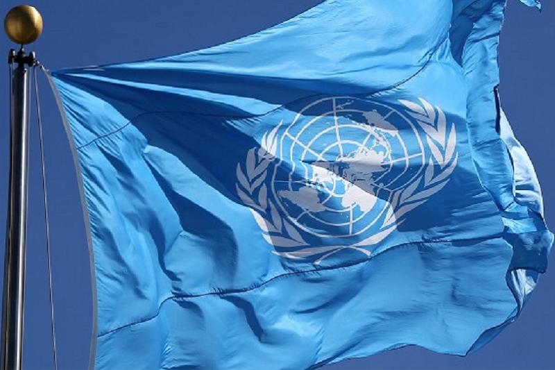 Covid-19: ONU aprova resolução para garantir