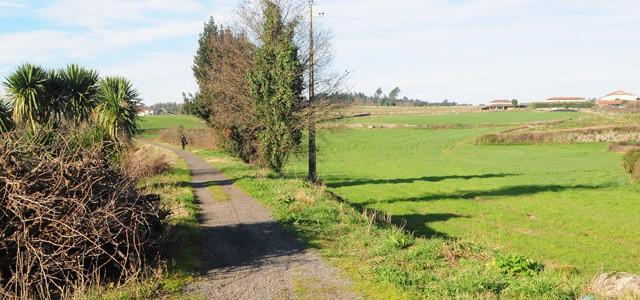 Famalicão arranca com construção de via ciclo-pedonal até à Póvoa de Varzim