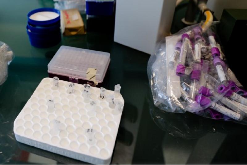 Covid-19: Israel anuncia descoberta de anticorpo para o coronavírus