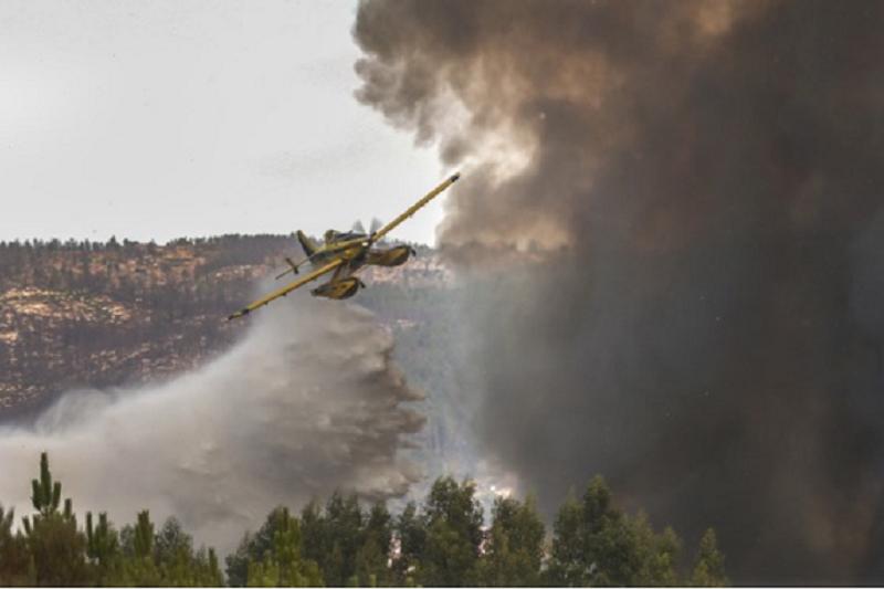Covid-19: Contexto do risco de incêndios é preocupante em 2020  observatório
