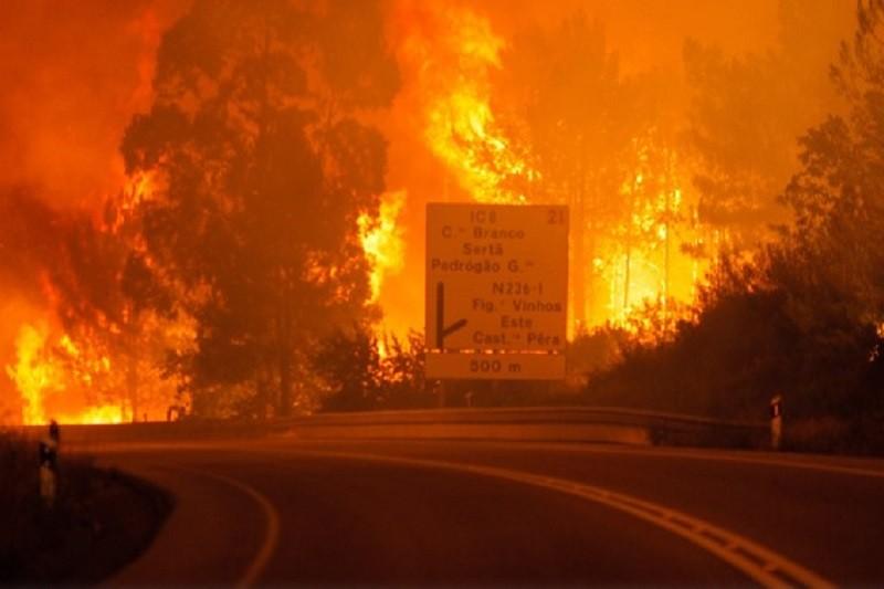 Observatório Técnico Independente alerta que fogos de 2017 se podem repetir