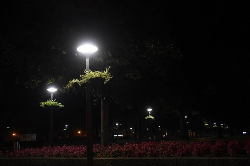Famalicão aposta na eficiência energética e poupa 40 por cento na iluminação pública